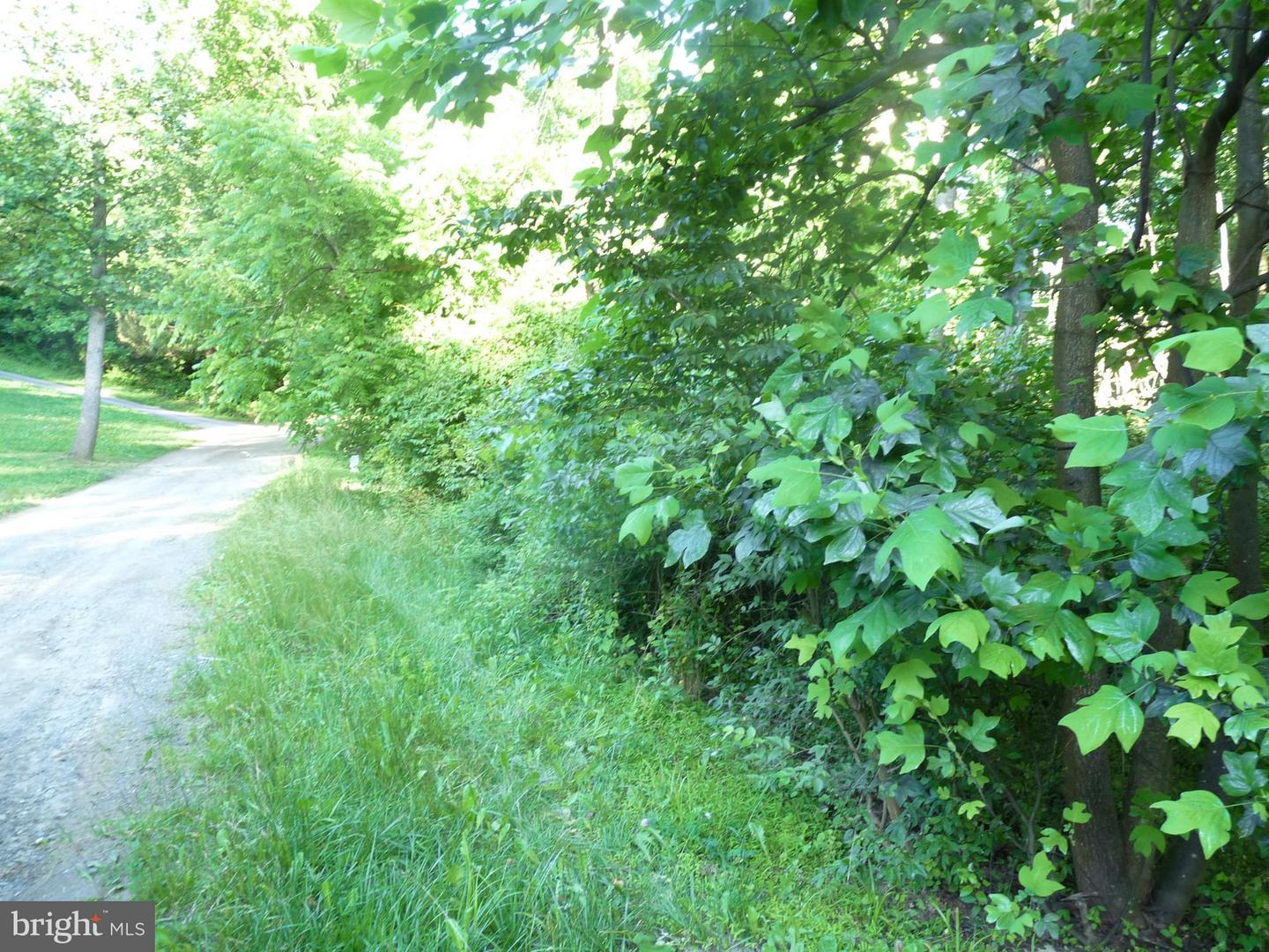 Land for Sale at Wenzel Rd Airville, Pennsylvania 17302 United States
