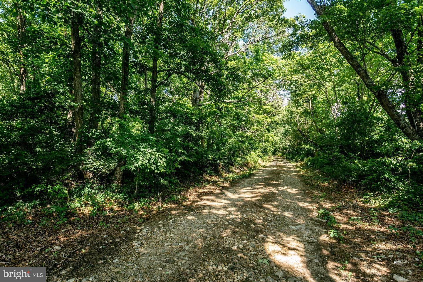 Land for Sale at Berrytown Rd Elkton, Virginia 22827 United States