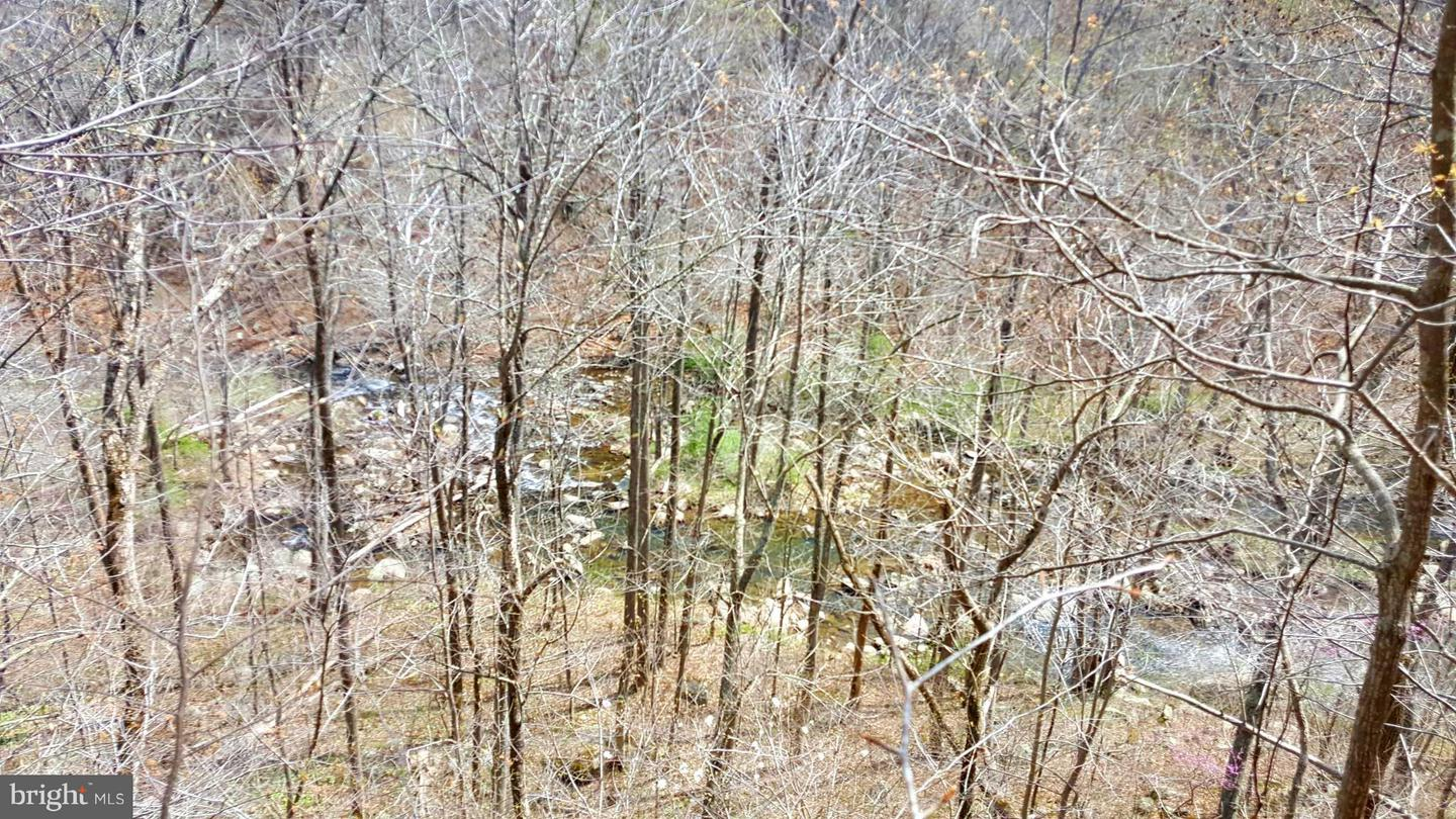 Additional photo for property listing at Rainbow Way Front Royal, Virginia 22630 United States