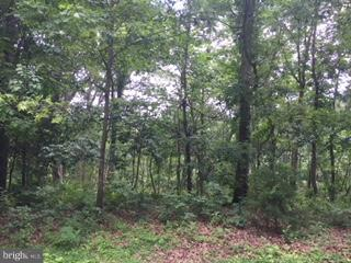 Land for Sale at Fox Hollow Rd. Frst S Woodstock, Virginia 22664 United States
