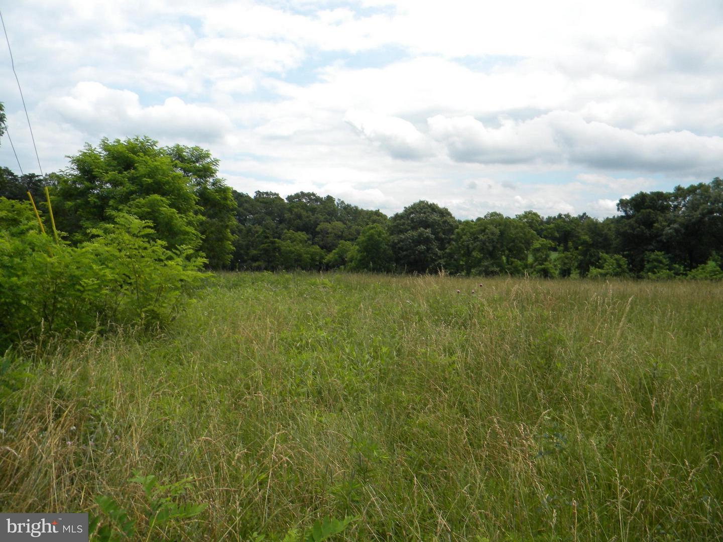 Land for Sale at Chestnut Way Old Fields, West Virginia 26845 United States