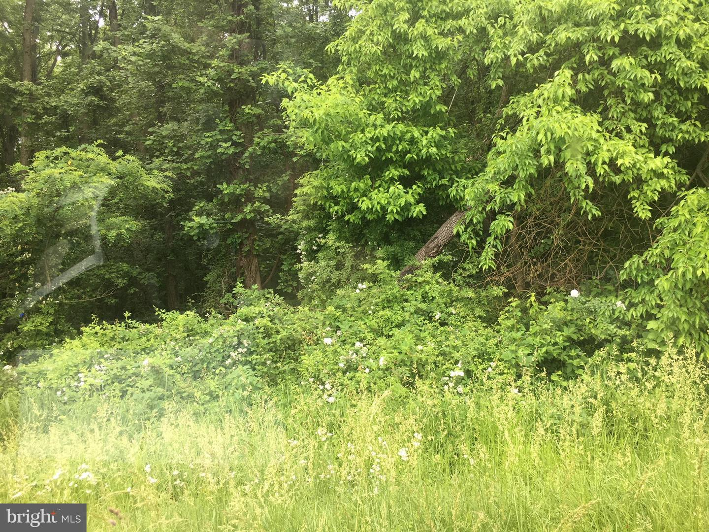 Land for Sale at Georgetown Rd SE Chestertown, Maryland 21620 United States