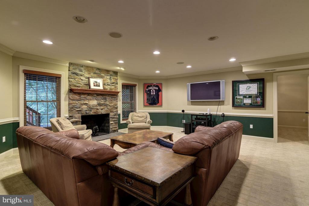 Lower-Level Family Room - 8633 FENWAY RD, BETHESDA