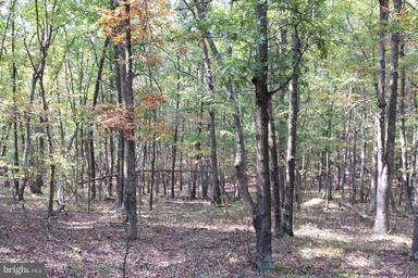 Land for Sale at 4546 Davids Rd Delray, West Virginia 26714 United States