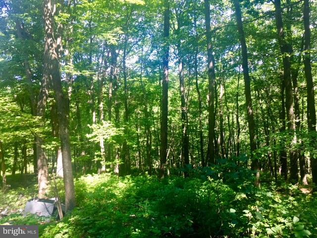土地 為 出售 在 Star Tannery, 弗吉尼亞州 22654 美國