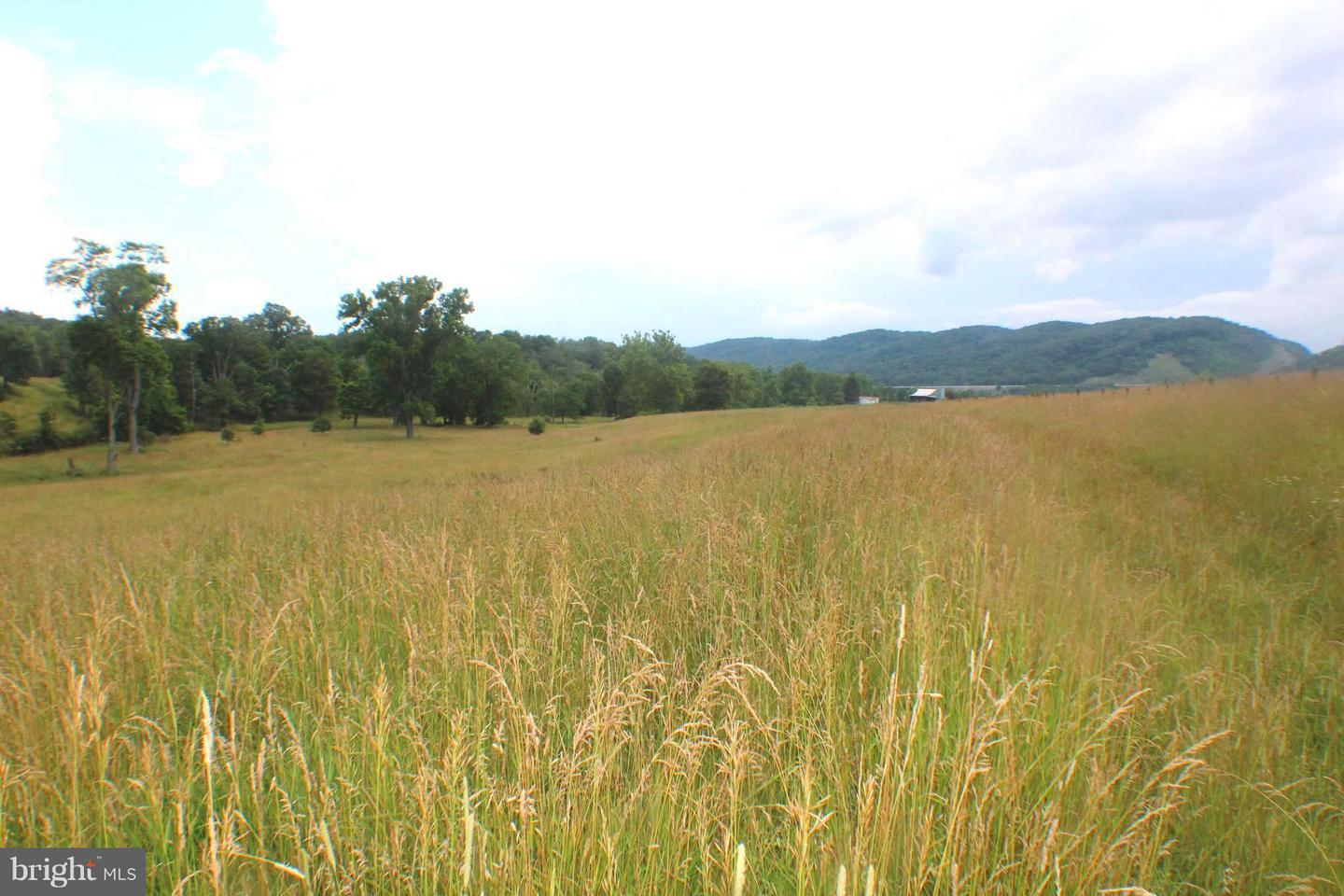 Land for Sale at 404 Luther Mongold Rd Maysville, West Virginia 26833 United States