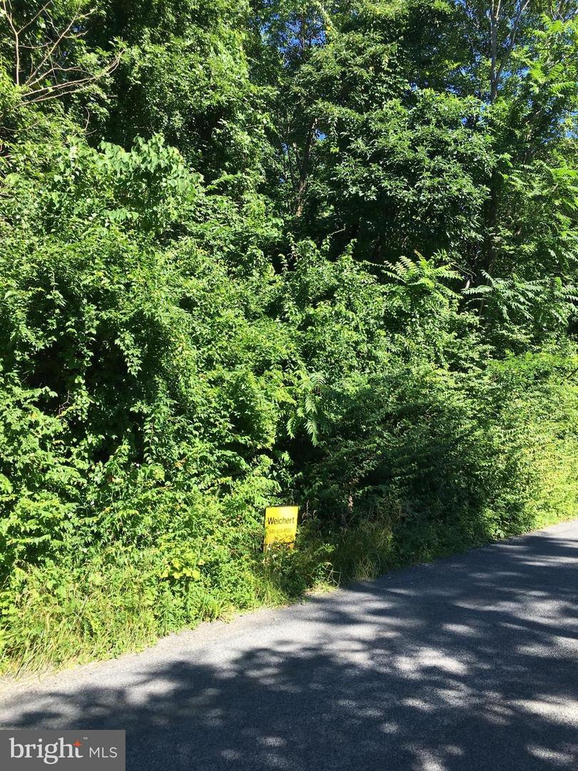 Land for Sale at Blue Mountain Rd Front Royal, Virginia 22630 United States