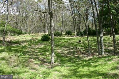 Land for Sale at Orndorff Way Capon Springs, West Virginia 26823 United States
