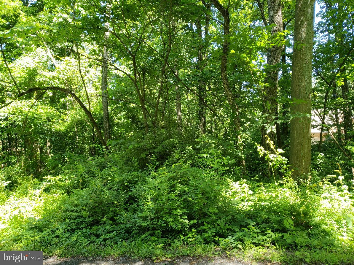 Land for Sale at Lot 3 Woodland Drive McConnellsburg, Pennsylvania 17233 United States