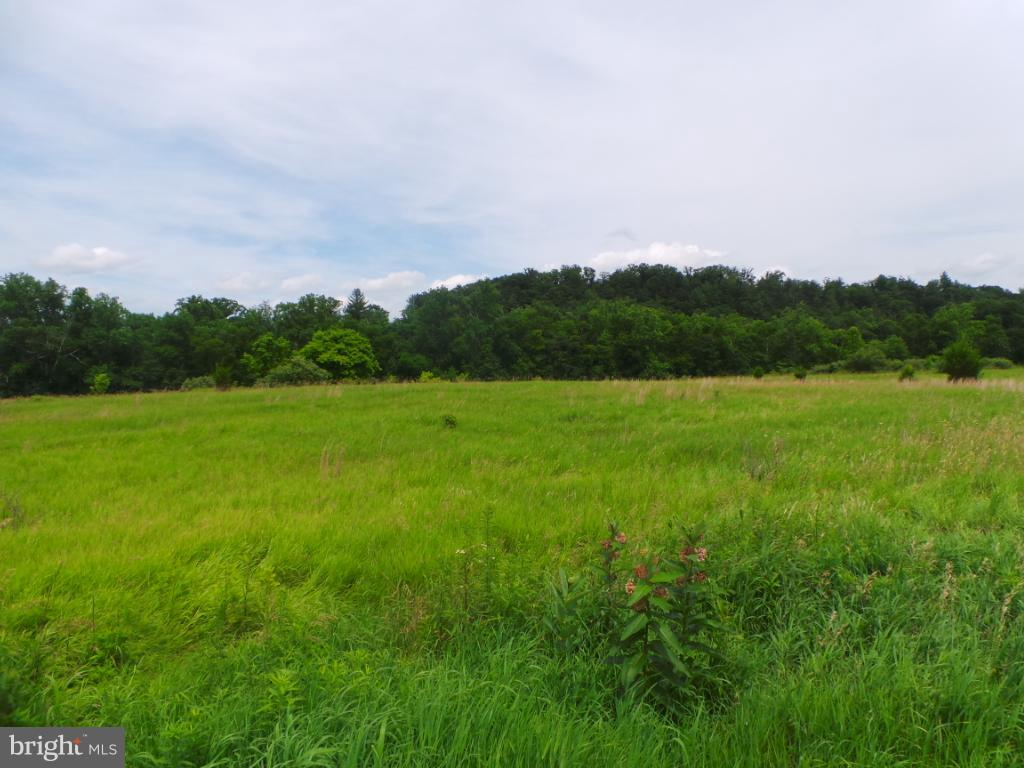 Land for Sale at 5 Amulet Cir Berkeley Springs, West Virginia 25411 United States