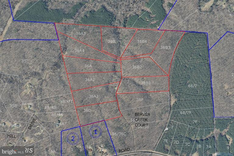 Land for Sale at 2a Beaver Creek Ct Lignum, Virginia 22726 United States