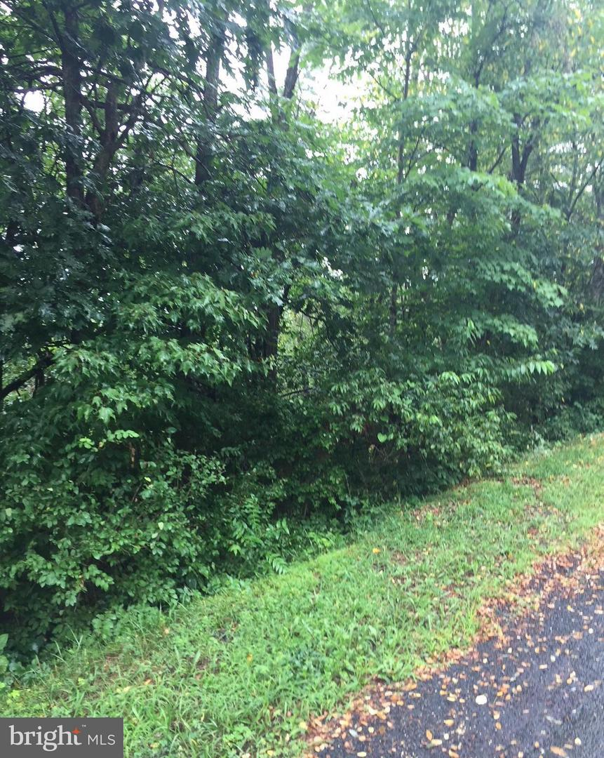 Land for Sale at 0 Mt Snow Ct Basye, Virginia 22810 United States