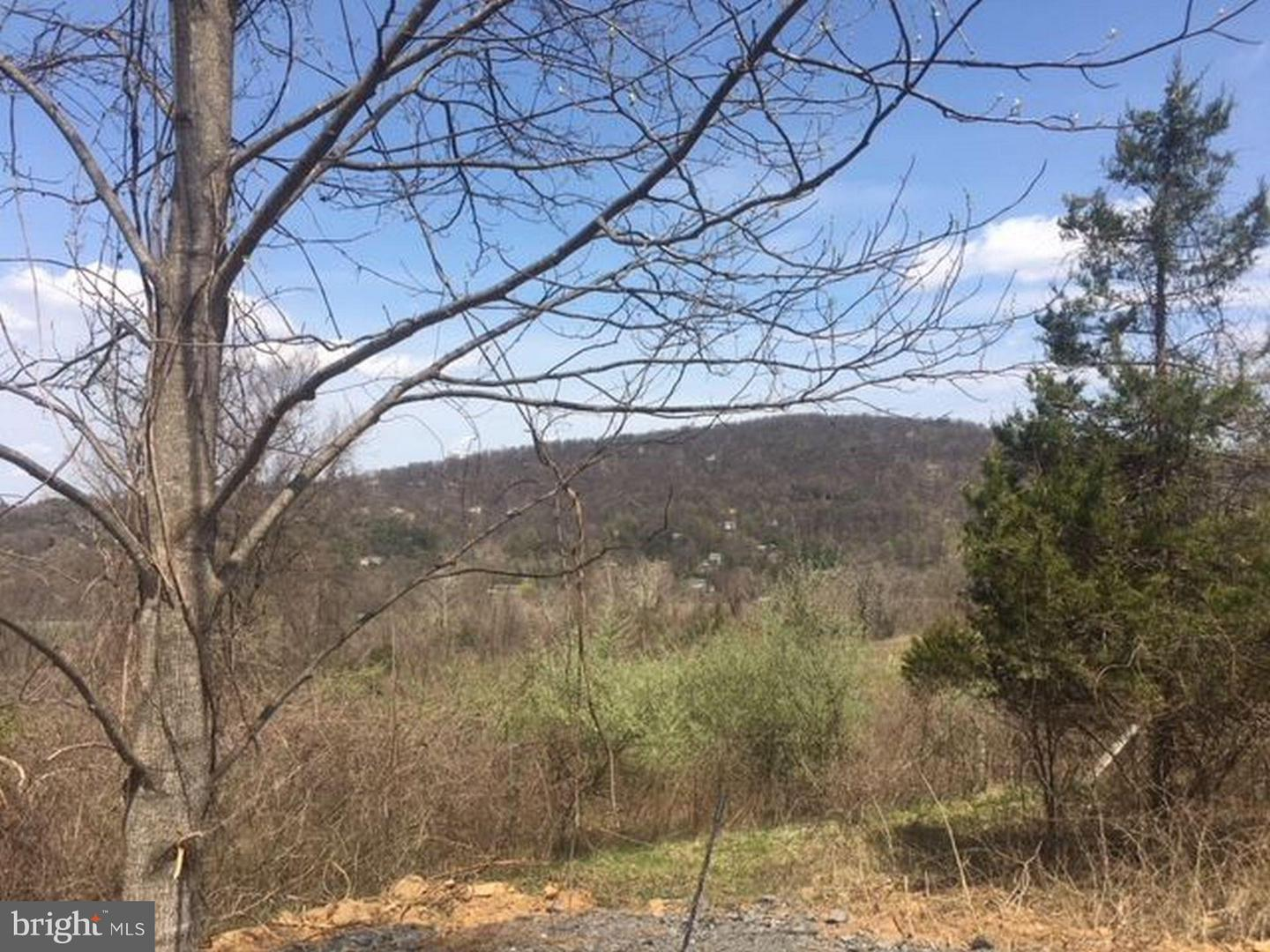 Land for Sale at Pickrell Dr Front Royal, Virginia 22630 United States