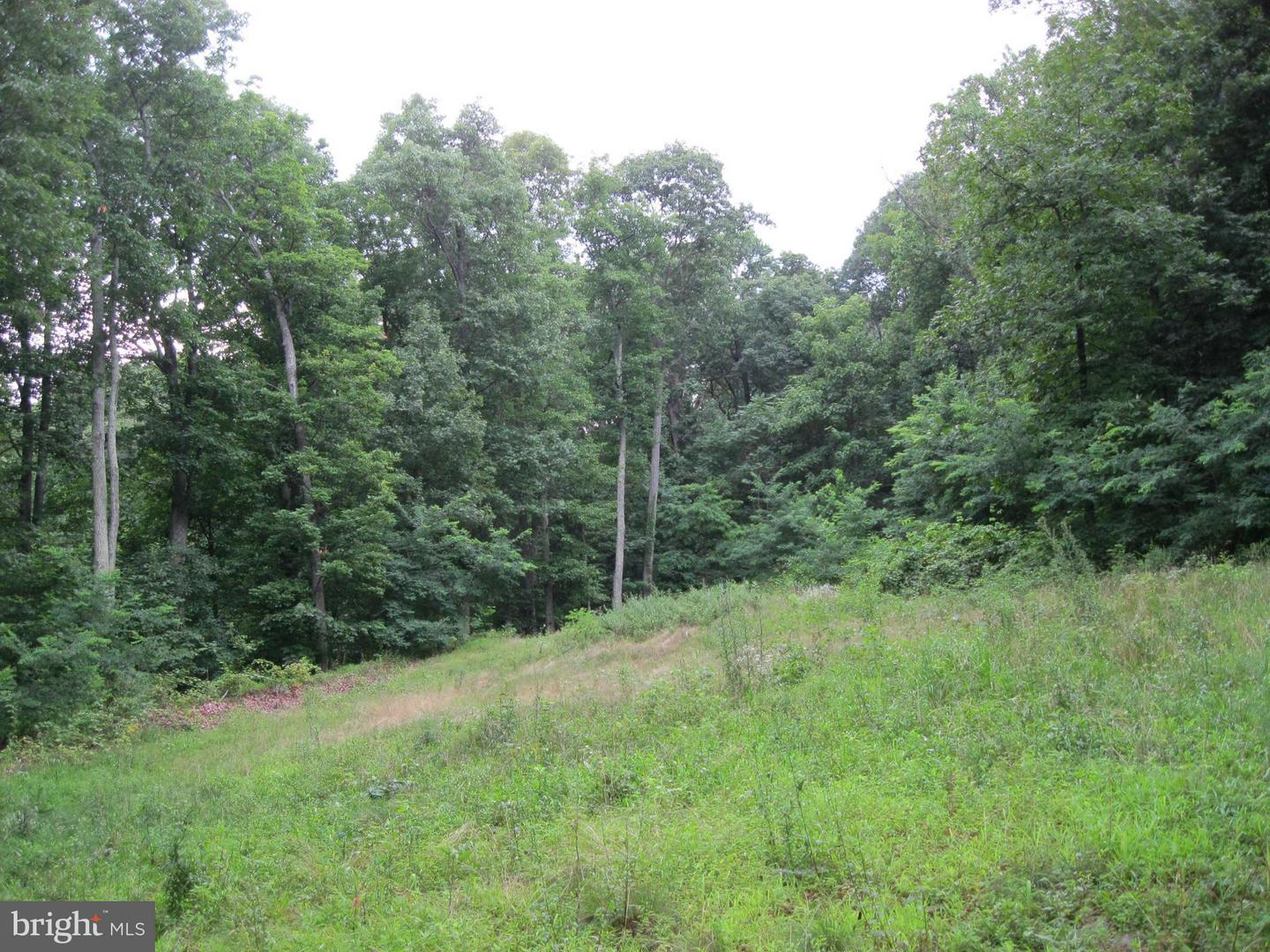 Land for Sale at 0 Granny Smith Rd Linden, Virginia 22642 United States