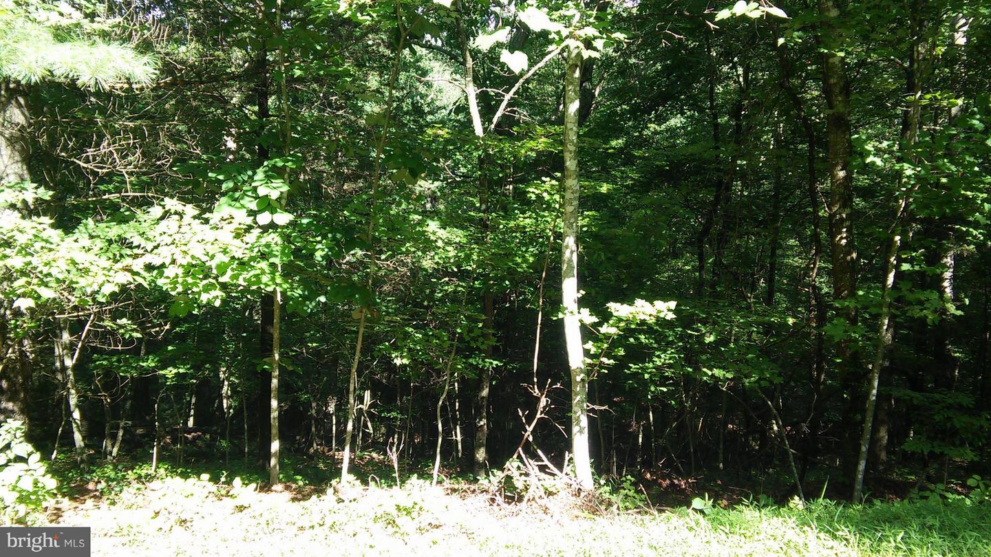 Land for Sale at 0 Anderson Rd Basye, Virginia 22810 United States