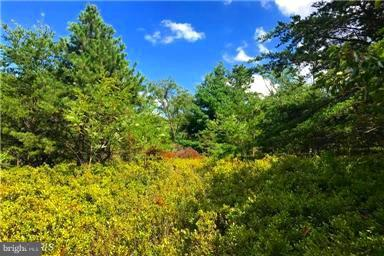 Land for Sale at Doe Garden Dr Yellow Spring, West Virginia 26865 United States