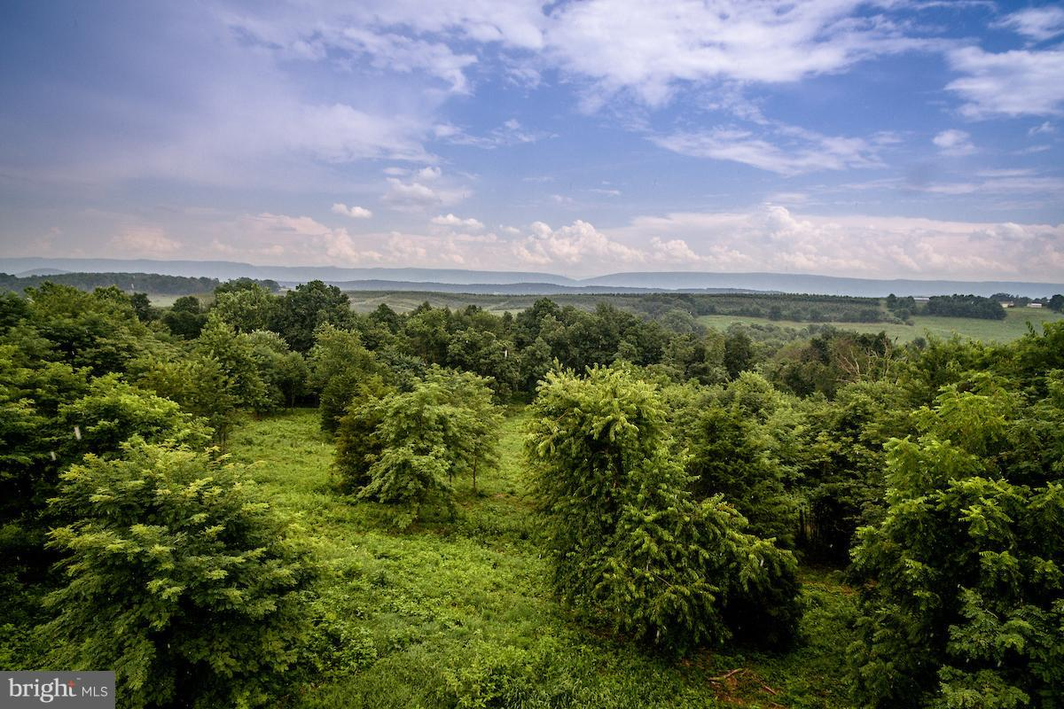 Land for Sale at 0 Wine Store Rd Timberville, Virginia 22853 United States