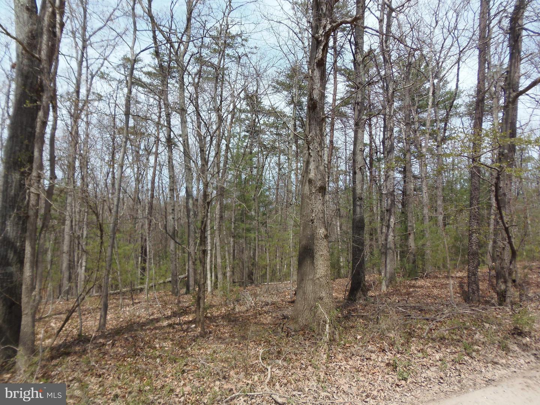 Land for Sale at Indian Run Ln Strasburg, Virginia 22657 United States