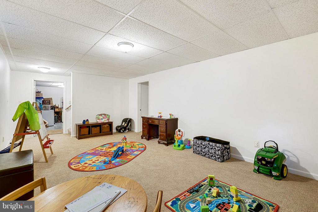 Basement - 6692 TAPPS FORD RD, HUME