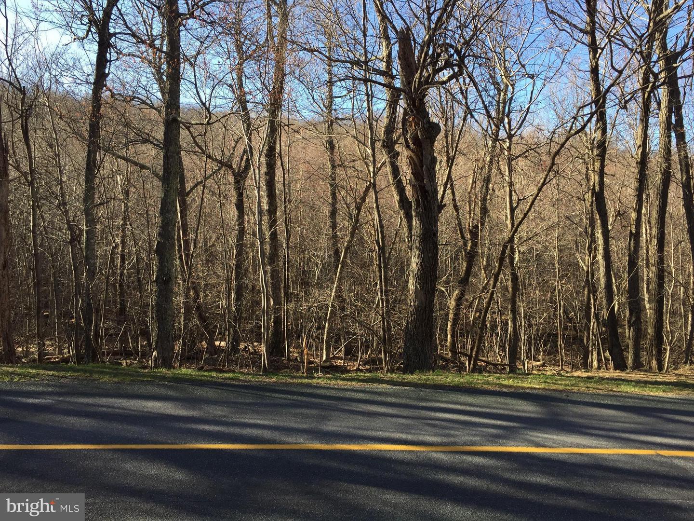 Land for Sale at Shamokin Springs Roseland, Virginia 22967 United States