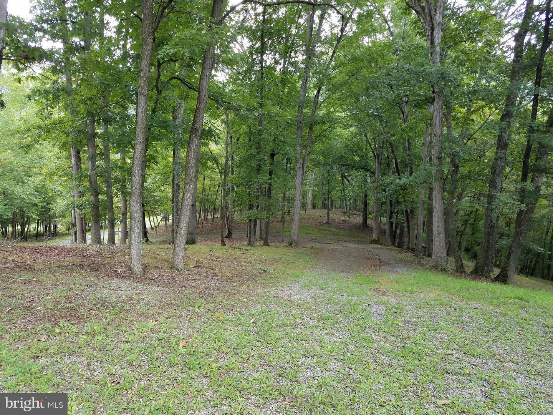 Land for Sale at 1 Deerwood Ln Berkeley Springs, West Virginia 25411 United States