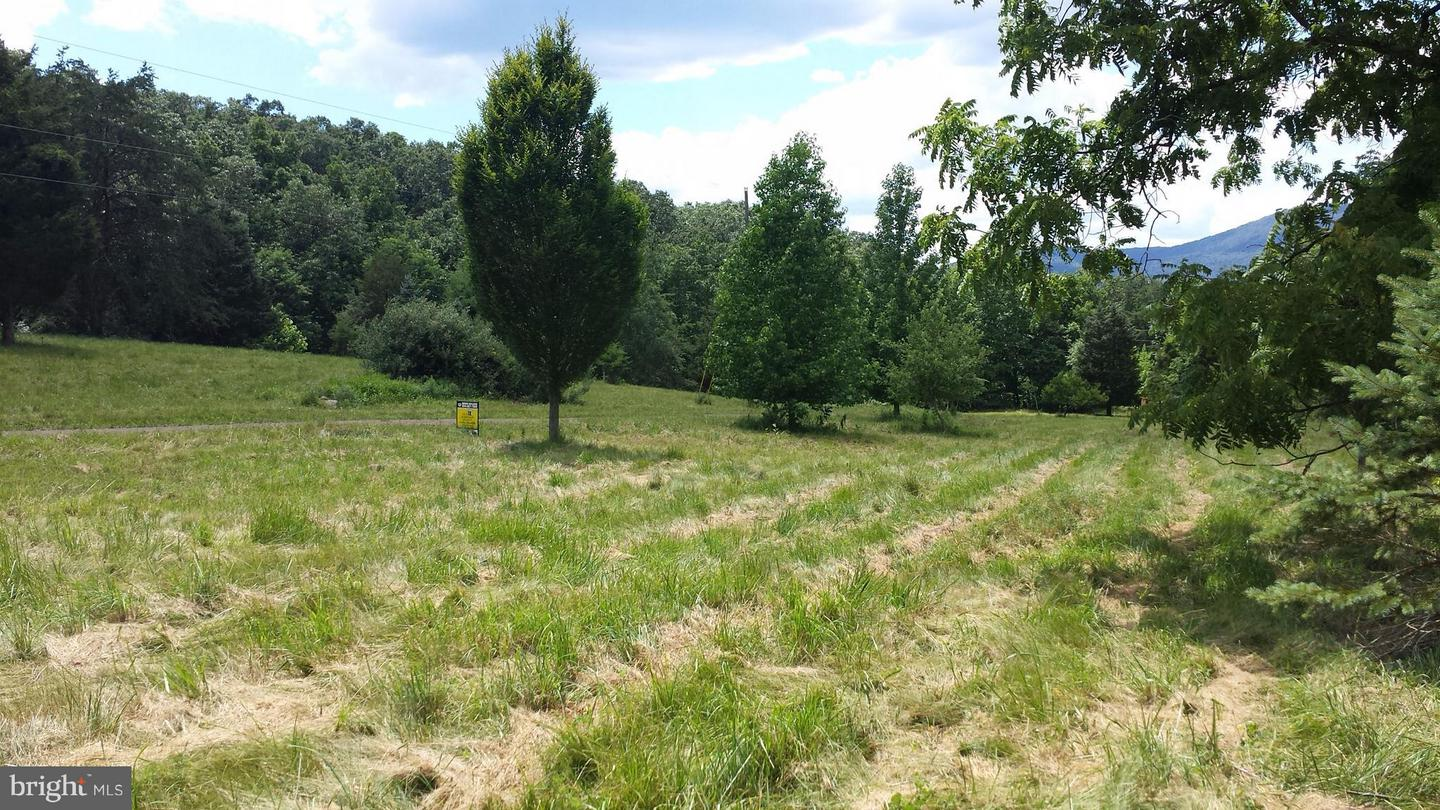 Land for Sale at Lot E West Brook Road Old Fields, West Virginia 26845 United States