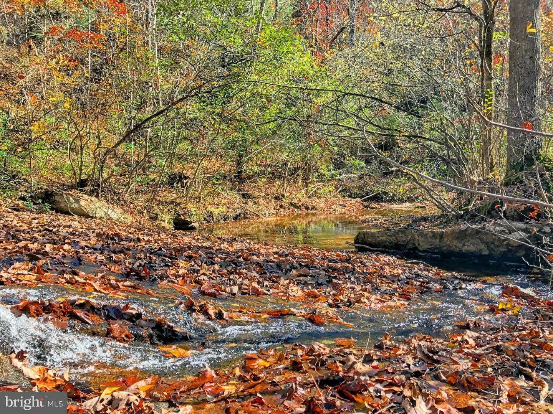 أراضي للـ Sale في Castleton, Virginia 22716 United States