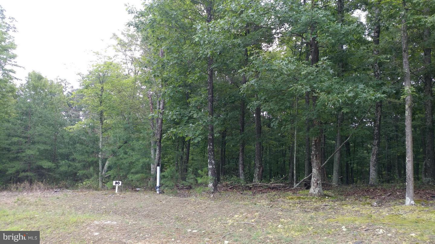 Additional photo for property listing at Bear Paw Berkeley Springs, West Virginia 25411 United States