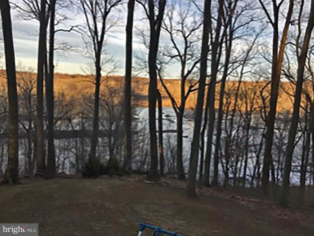Land for Sale at 9214 Potomac Ridge Road 9214 Potomac Ridge Road Great Falls, Virginia 22066 United States