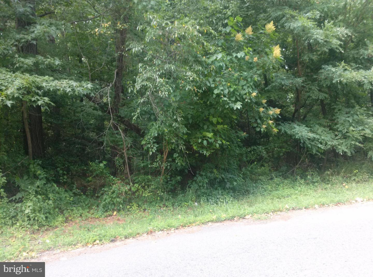 Land for Sale at Three Notch Parcel #93 Rd Dameron, Maryland 20628 United States