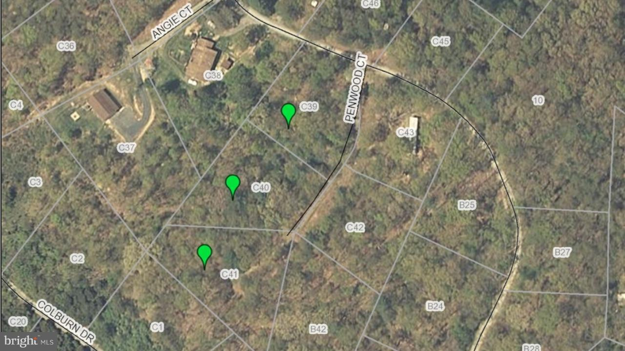Land for Sale at Penwood Court Rileyville, Virginia 22650 United States