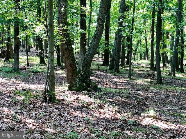 Land for Sale at 15623 Myers Dr Fort Loudon, Pennsylvania 17224 United States