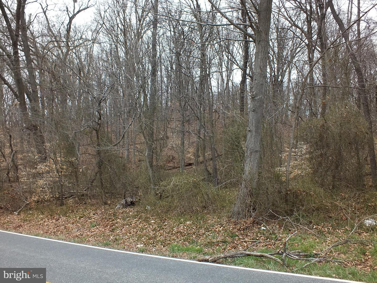 Land for Sale at Gravel Hill Rd Woodsboro, Maryland 21798 United States