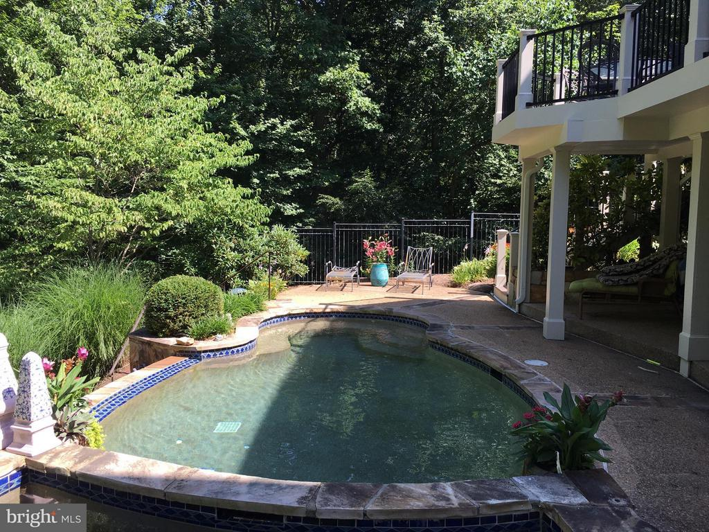 Private Pool - 11258 SOMMERSWORTH CT, STERLING