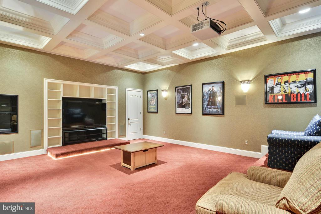 Lower Level Media Center - 11258 SOMMERSWORTH CT, STERLING