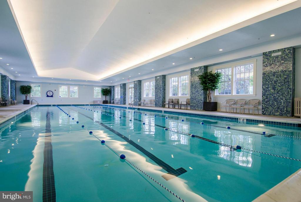 Waverly Club Indoor Pool - 15530 CHILLMARK CT, HAYMARKET