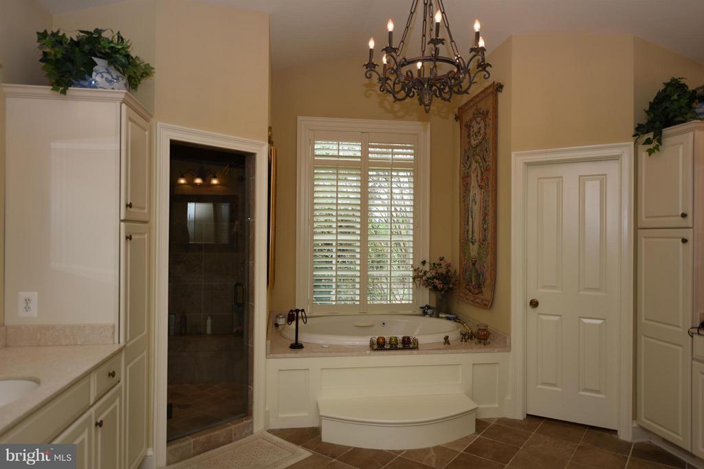 Main Floor Master Bath - 96 LYLE LN, AMISSVILLE