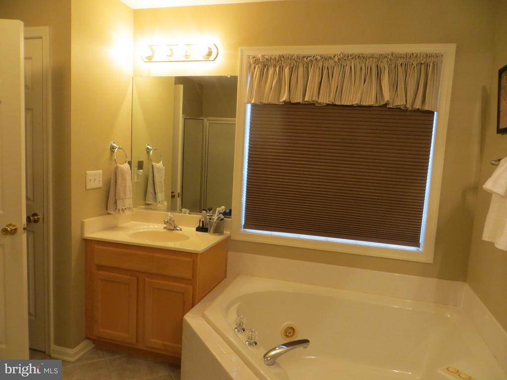 Master bath with split vanities - 119 PATRICK HENRY CT, LOCUST GROVE