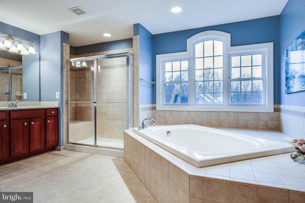 Separate Shower/Soaking Tub - 12910 MACNEIL CT, FREDERICKSBURG