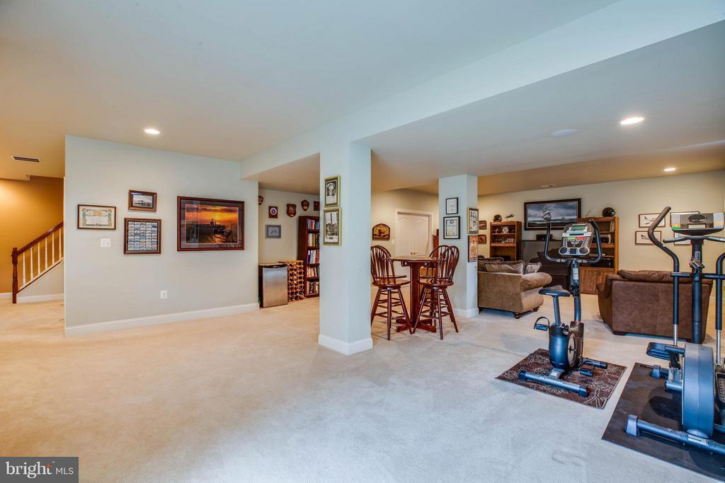 9' Ceilings, Walk up Level. Full Bathroom - 12910 MACNEIL CT, FREDERICKSBURG