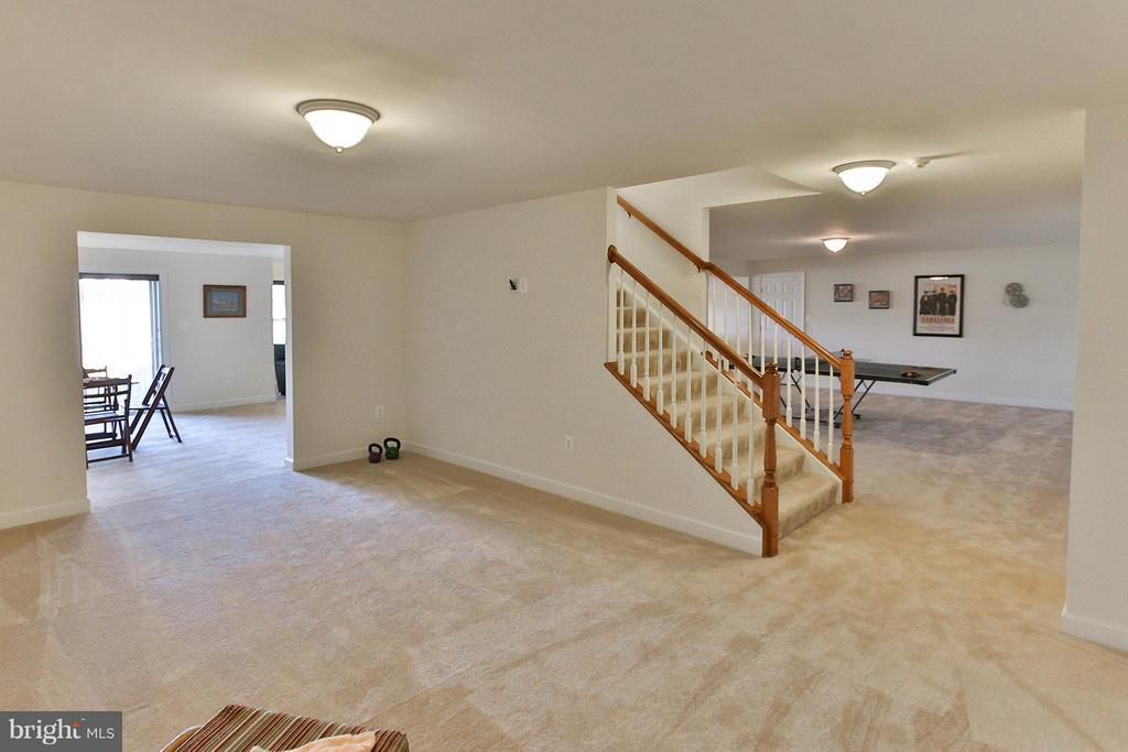 Look at all the space down here! - 36766 WATERFRONT LN, PURCELLVILLE