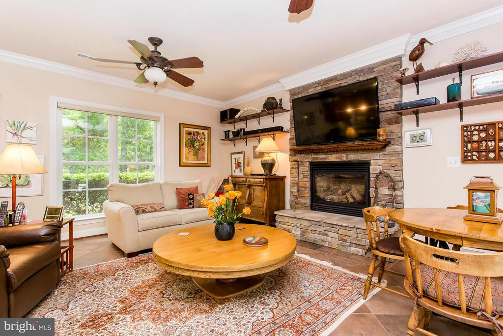 Family Room - 11416 BLUFFS RDG, SPOTSYLVANIA