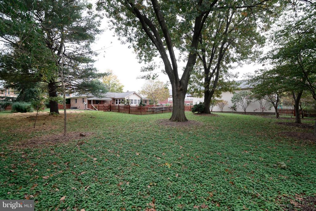 HUGE flat backyard w mature trees and 6'fence - 138 FORT EVANS RD NE, LEESBURG