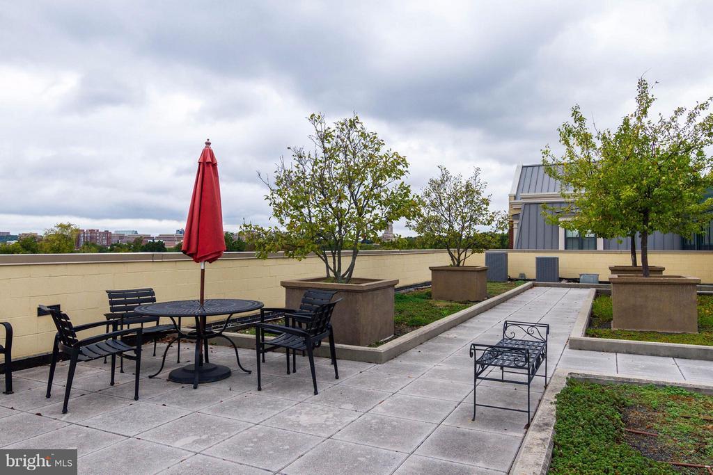 Rooftop patio - 1111 ORONOCO ST #439, ALEXANDRIA