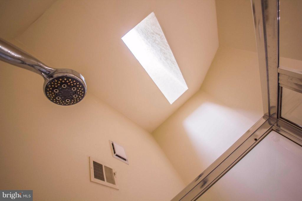 sky light in master bath - 7023 ASHLEIGH MANOR CT, ALEXANDRIA