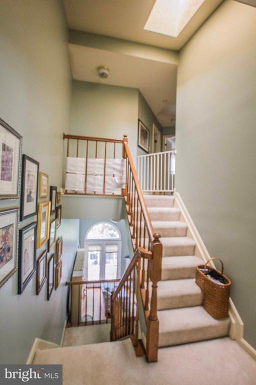 Skyline in stairwells - 7023 ASHLEIGH MANOR CT, ALEXANDRIA