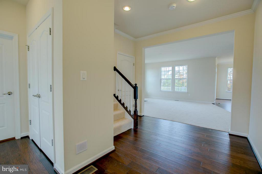 Entry, Hardwood Throughout Entire Main Level - 176 VERBENA DR, STAFFORD