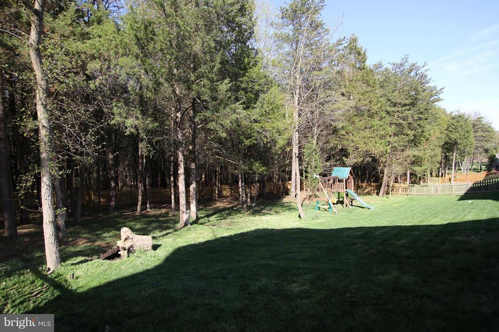 Fully fenced rear yard with playset for the kids - 22360 AGING OAK DR, LEESBURG