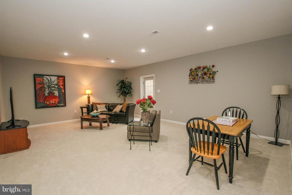 Newly finished lower level rec room with walk up - 22360 AGING OAK DR, LEESBURG