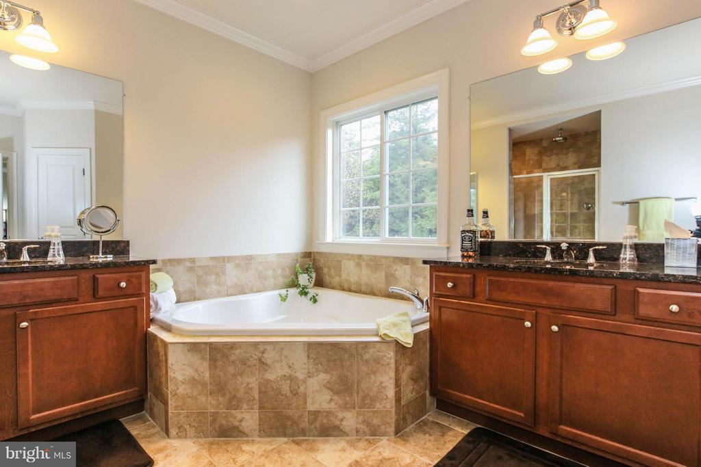 Luxurious master bath with soaking tub - 22360 AGING OAK DR, LEESBURG